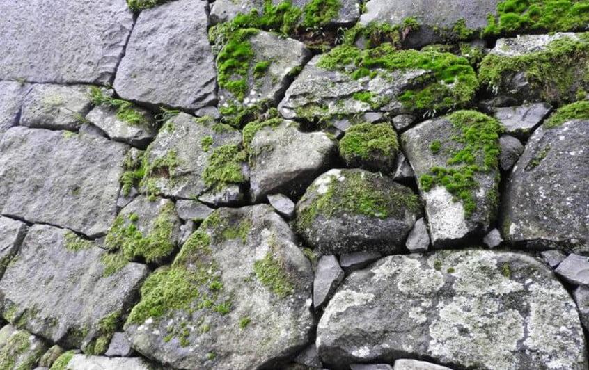 松江城にパワースポット?ハート型の石垣がある?場所はどこ? (2)