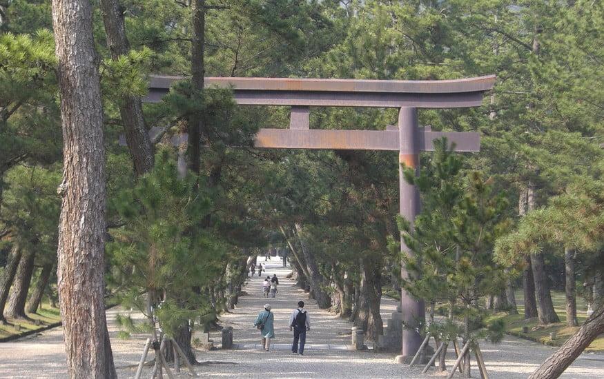 出雲大社(IZUMO-OYASHIRO)・松並木の参道(MATUNAMIKI-SANDO)