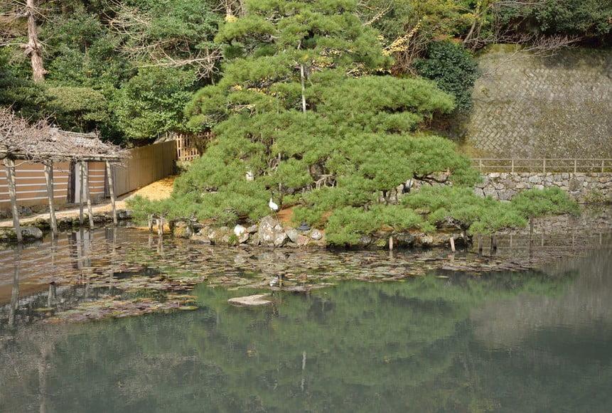 出雲大社(IZUMO-OYASHIRO)・鏡の池(KAGAGAMI-NO-IKE)