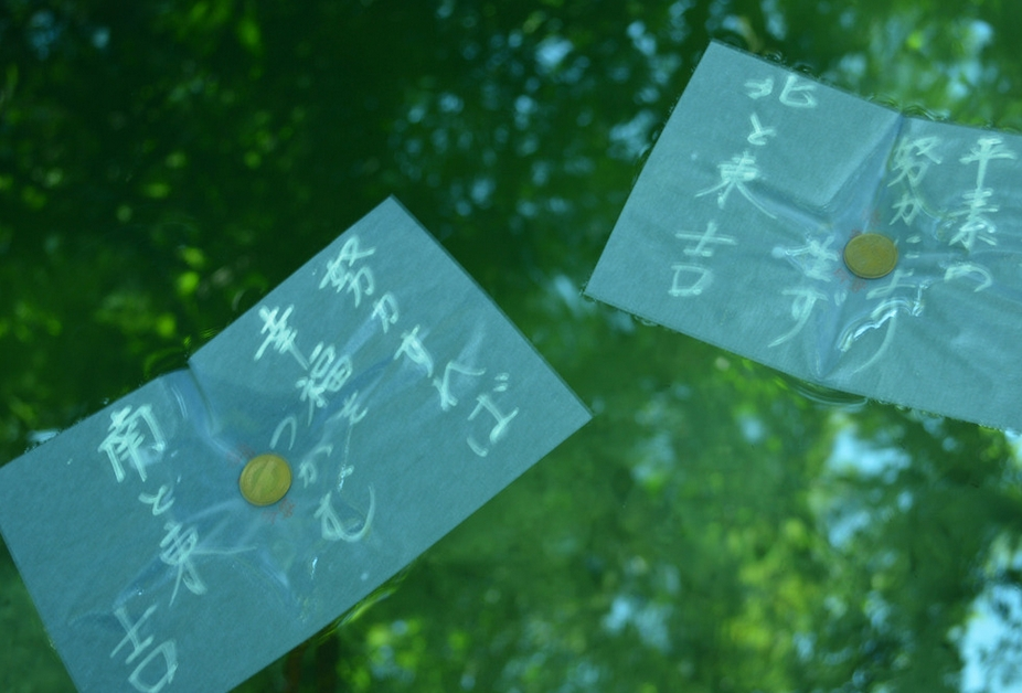 八重垣神社の鏡の池の和紙の占い